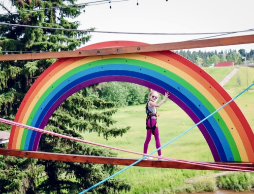 Adventure Awaits at Snow Valley Aerial Park